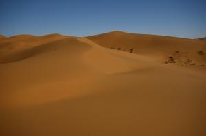 1396750_desert
