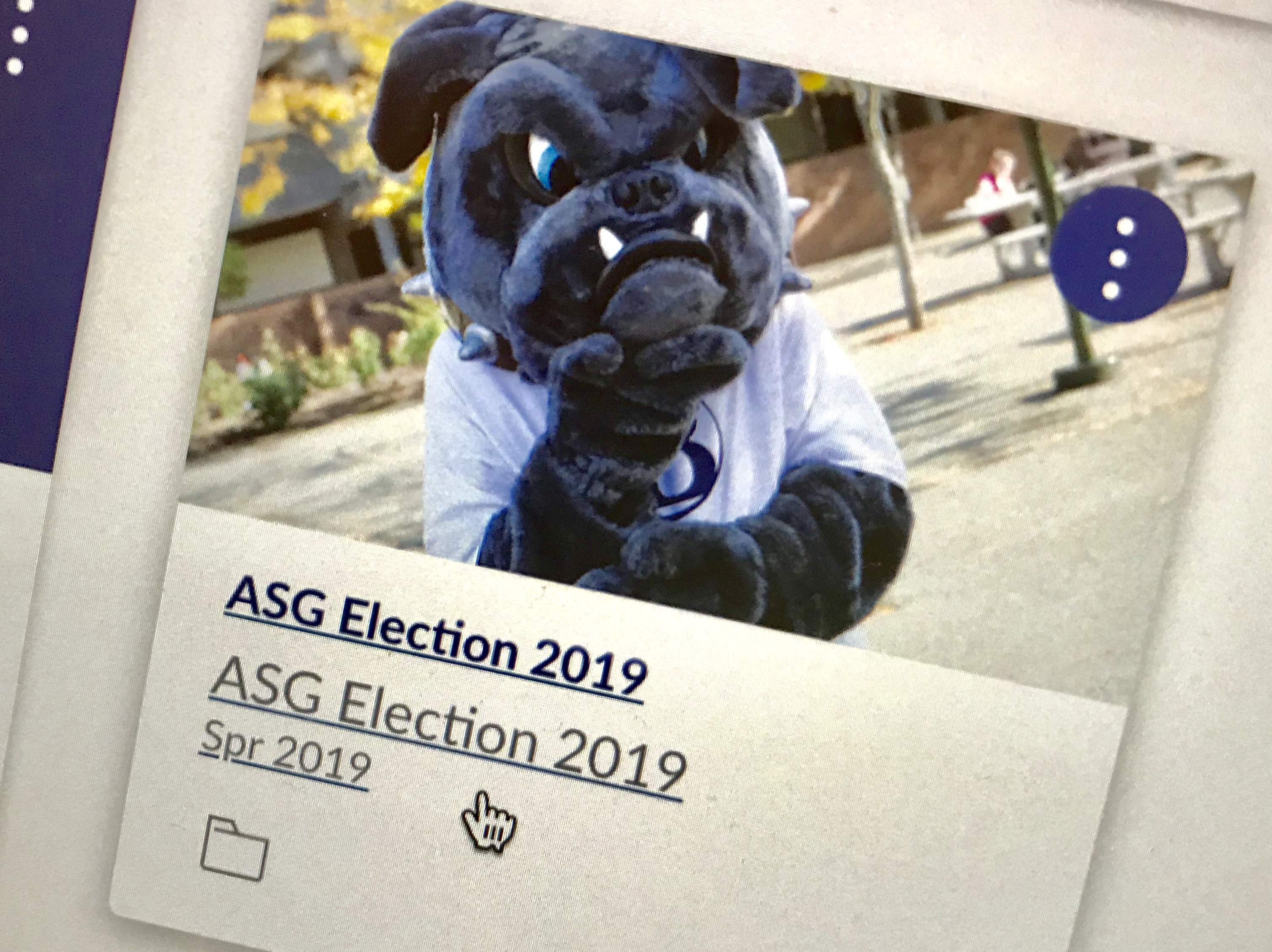 ASG Election