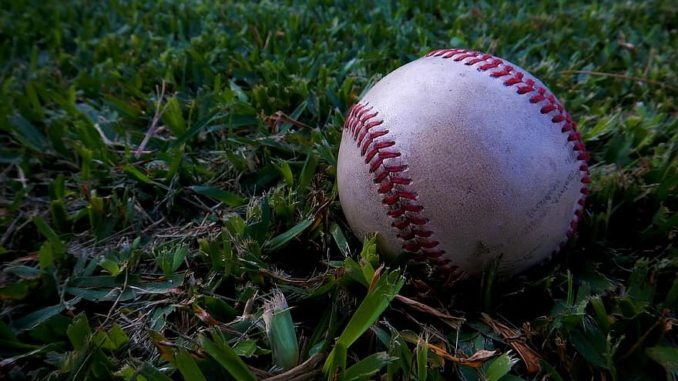 a baseball lying in grass